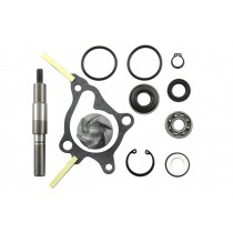Kit riparazione pompa acqua Honda Fes foresight