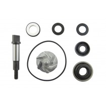 Kit riparazione pompa acqua Honda Sh scoopy